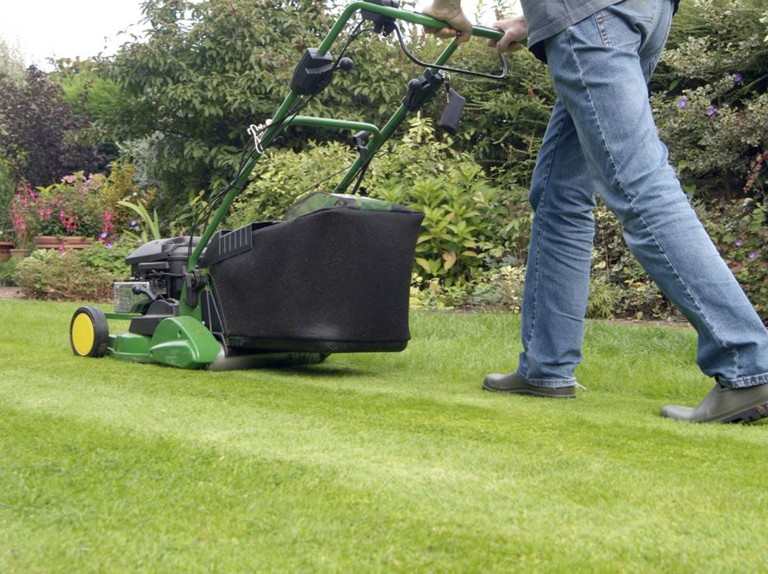 7 Tricks That Help You Mow the Lawn Like a Pro
